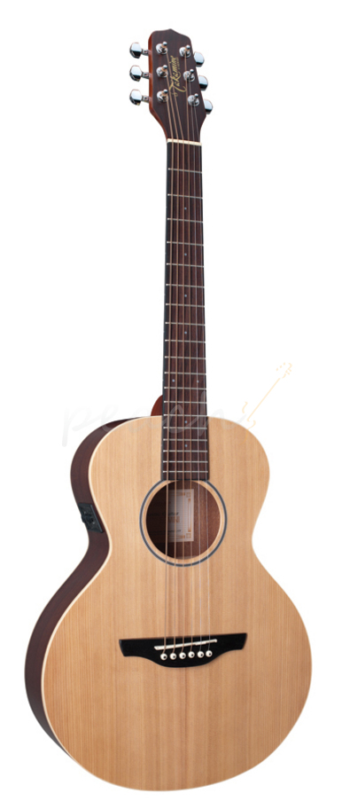Takamine Mini Acoustic