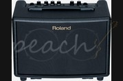 Roland AC-33 Acoustic guitar Amplifier