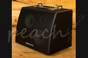 Phil Jones Bass Session 77 100W 2x7 + Tweeter