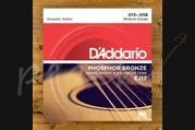D'addario - 13-56 Medium Phosphor Bronze