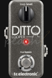 TC Electronic Ditto Micro Looper