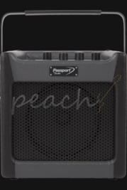 Fender Passport Mini PA