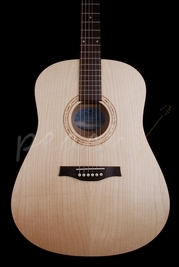 Seagull Excursion Dreadnaught Acoustic