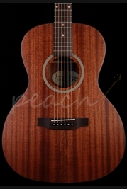 James Neligan DEV-PFI Electro Acoustic Parlor Guitar