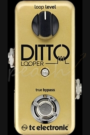 TC Electronic Ditto looper Gold Limited Edition