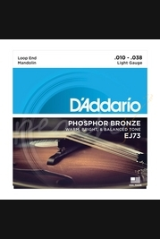 D'Addario - 10-38 Phosphor Bronze Mandolin Strings Light