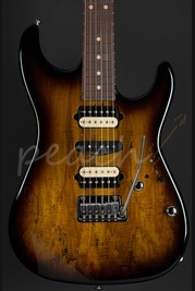 Suhr Standard Spalted Maple 2 Tone Sunburst