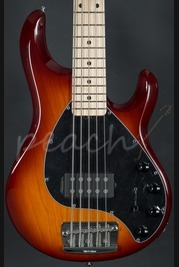 Music Man Stingray 5 string maple neck Honeyburst with black pickguard