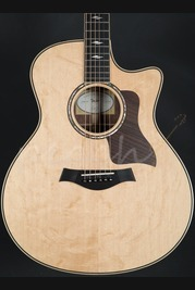 Taylor Honduran Rosewood & Bearclaw Spruce GS BTO