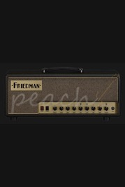 Friedman Runt 50 Watt Head