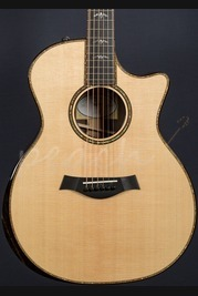 Taylor 914ce Brazilian Rosewood back and sides