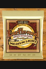 Ernie Ball Earthwood 12 - 54