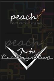 Fender Custom Shop 30th Anniversary Eric Clapton Signature Strat Journeyman Relic Black