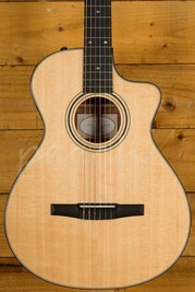 Taylor 312ce-N *Marked*