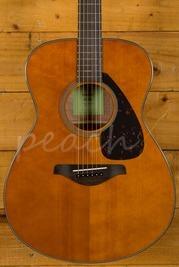 Yamaha FS800 Acoustic Tinted