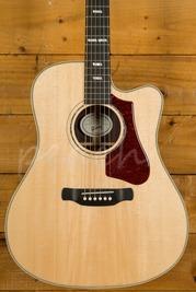 Gibson Hummingbird Rosewood Avant Garde Antique Natural