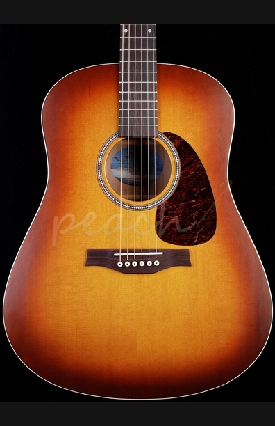 Seagull Entourage Rustic Dreadnought S6