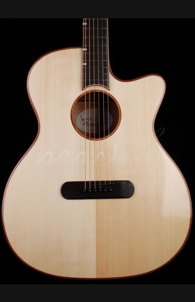 James Neligan LIS-ACFI Electro Acoustic Guitar