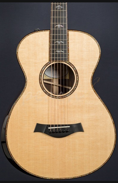 Taylor 912e 12 fret Brazilan Rosewood back and sides