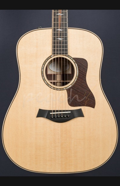 "Taylor 810e Modified Model ""Ex Taylor Roadshow"""