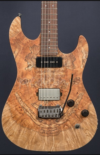 Patrick James Eggle 96 Drop Top Spalted Maple P90/HB