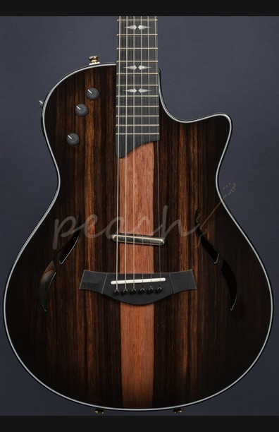 Taylor T5z Custom LTD Macassar Top