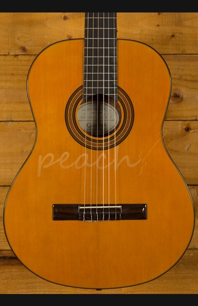 Epiphone PRO-1 Classical Guitar