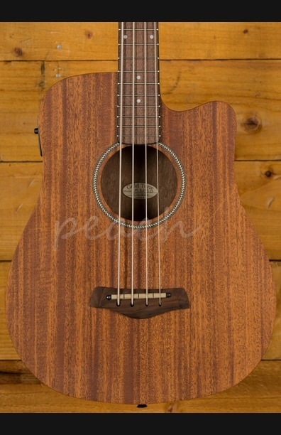 Gold Tone Micro Bass Electro Acoustic 25""