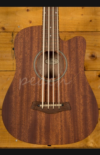 Gold Tone Micro Bass Electro Acoustic